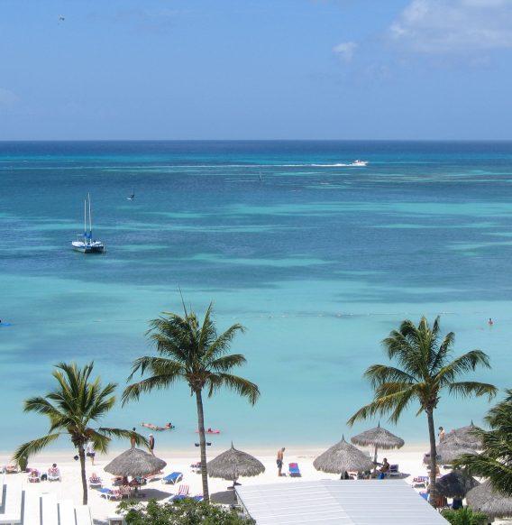 Aruba April News – Coronavirus Survey