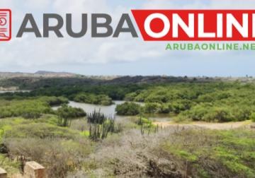 When do you need the Aruba Health App?